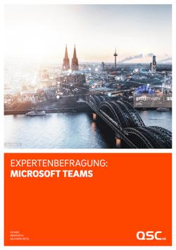 Expertenbefragung Miscrosoft Teams / Studie